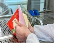 Od zaraz dam pracę w Holandii na produkcji pakowanie sera bez języka Amsterdam