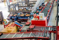 Anglia praca pakowanie, sortowanie owoców bez języka Leeds od zaraz