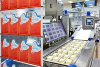 Pakowanie sera praca w Holandii bez znajomości języka produkcja od zaraz Venlo