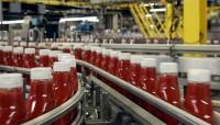 Bez języka od zaraz Göteborg praca w Szwecji na produkcji koncentratu pomidorowego
