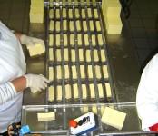 Oferta pracy w Holandii od zaraz bez znajomości języka Utrecht pakowanie sera