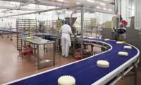 Od zaraz dam pracę w Danii bez znajomości języka na produkcji cukierniczej Aalborg