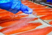 Praca Norwegia na produkcji rybnej od zaraz bez znajomości języka Bergen