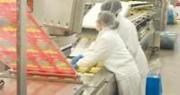 Hamburg pakowanie sera od zaraz Niemcy praca bez znajomości języka
