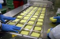 Praca w Niemczech od zaraz przy pakowaniu sera bez znajomości języka Dortmund