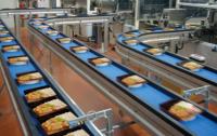 Anglia praca od zaraz bez znajomości języka w Chichester na produkcji żywności