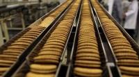 Dam pracę w Niemczech bez znajomości języka od zaraz na produkcji ciastek