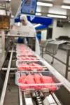 Oferta pracy w Norwegii od zaraz bez znajomości języka Sarpsborg pakowanie mięsa