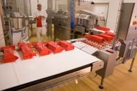 Od zaraz Holandia praca bez znajomości języka Almere na produkcji serów